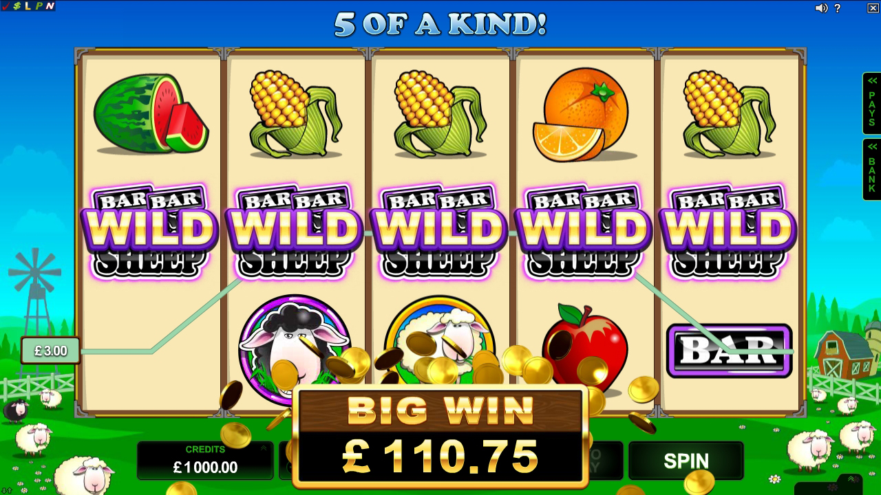 free slots online for fun crazy slots casino